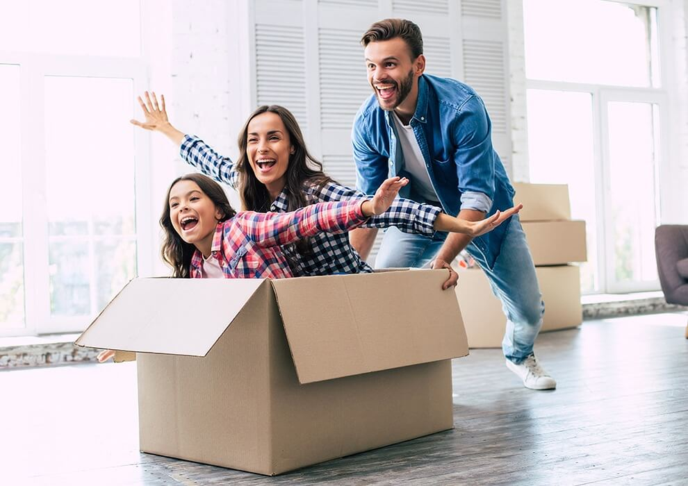 Conveyancing purchase